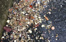 Mobile Sandbehandlung Multiwash Hook - Überkorn
