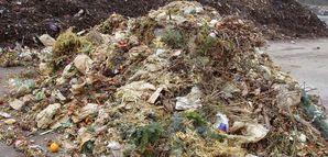 Bio waste and biomass