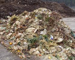 Bioabfall und Biomasse